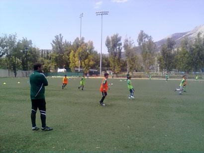Τα νέα των Σχολών Ποδοσφαίρου   pao.gr